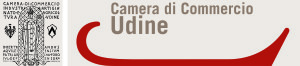 Logotipo CCIAA Udine Colore